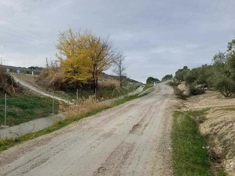 Agricultores se quejan de falta de accesos a Úbeda tras la terminación de la A-32