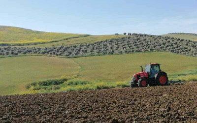 La agricultura española podría perder 585 millones anuales de fondos de la PAC