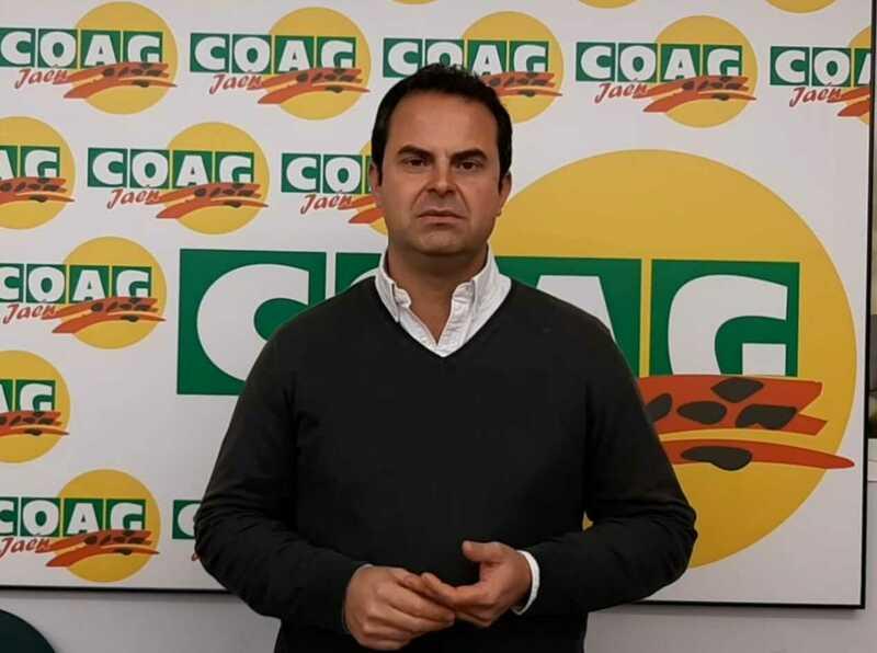Satisfacción por la publicación en el BOE del decreto que permite la autorregulación del sector del aceite de oliva