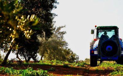 El agricultor profesional sería el gran perdedor de la aplicación de la nueva PAC en España