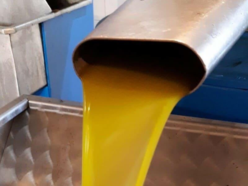 ASAJA, COAG y UPA instan al Ministerio de Agricultura a que intervenga ante la crisis de precios del aceite de oliva