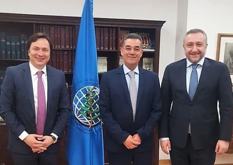 Georgia quiere ser miembro del Consejo Oleícola Internacional