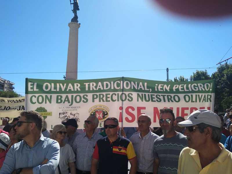 10 razones por las que ir a la manifestación del 9 de julio