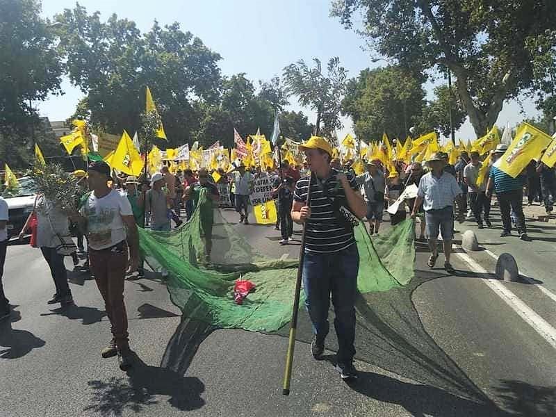 Clamor en Sevilla por el bajo precio del aceite