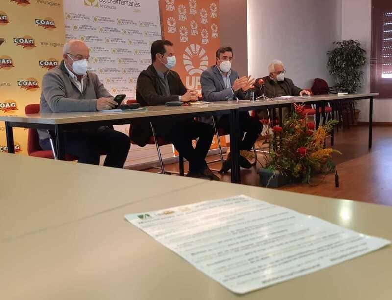 Jaén retoma las movilizaciones pidiendo la retirada del decreto de convergencia de la PAC