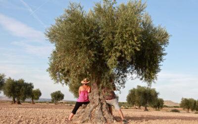 Comienza la tramitación del Estatuto de las mujeres rurales y del mar de Andalucía