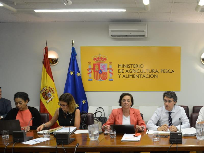 El Ministerio se compromete a facilitar medias de autorregulación